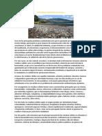 El Problema Ambiental de la Basura.docx