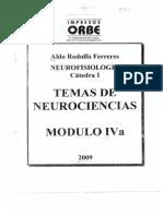 Ferreres Modulo IV A