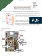 Renal Medicine_ Haemodialysis