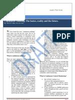 Continuous Audit Article