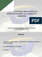 Dificultades en La Acreditacion de Conductas Tipicas en Los Delitos Medio Ambientales PDF 1705 Kb
