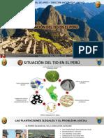 Situación Del Tid en Perú - Marzo 2017 (1)