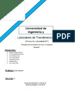 Report Draft - Lab. 1
