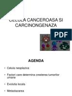 13. Celula canceroasa si carcinogeneza.ppt