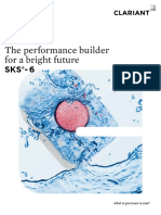 The Performance Builder for a Bright Future SKS-6