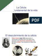 CELULA-1.ppt