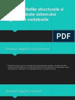 Particularitatile Structurale Si Functionaleale Sistemului DigestivLaVertebrate