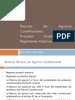 Clase- Recurso de Agravio Constitucional Ordinarios y Atípicos