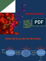 2_Farmacodinamia_2017