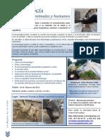 Kinesiologia Para Animales y Humanos La Bassa 2013