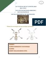 manual de sapo taller.pdf
