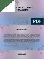 CAÍDAS ESTRUCTURAS HIDRAULICAS
