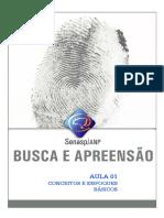 Curso Busca e Apreensão_SENASP (Completo)