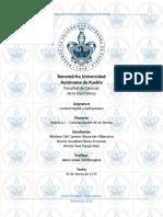 P2_CARACTERIZACION_HORNO.pdf