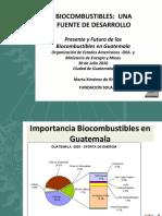 16 Conferencia Bio Combustibles una fuente de Desarrollo.pdf