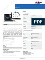 DSS Professional2