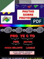 ALGUNAS PAUTAS SOBRE PROYECTOS.pdf