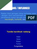 1-inflamasi1.ppt