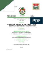 Proyecto Guatemalan Bovinos l