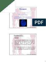 Brasagem.GEM31_0709.pdf