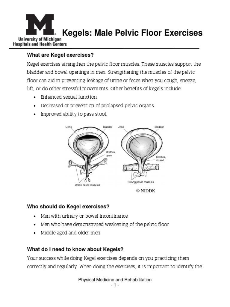 Male Kegel Ex Urinary Incontinence Urology