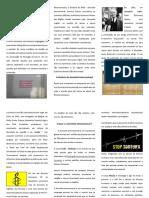 Os Direitos Humanos - Organizações AI - II.pdf