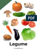 Imagini-pe-categorii.-Setul-2.pdf