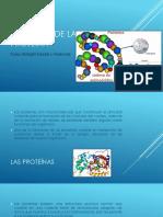 Presentación1-1.pptx