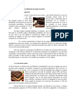 Tehnici Promotionale - Ciocolata