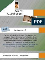 JOHANNA Problemas-panificación