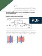 Sistema Sensor de Pulso Cardiaco