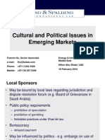 Cultural and Political Issues in Emerging Markets