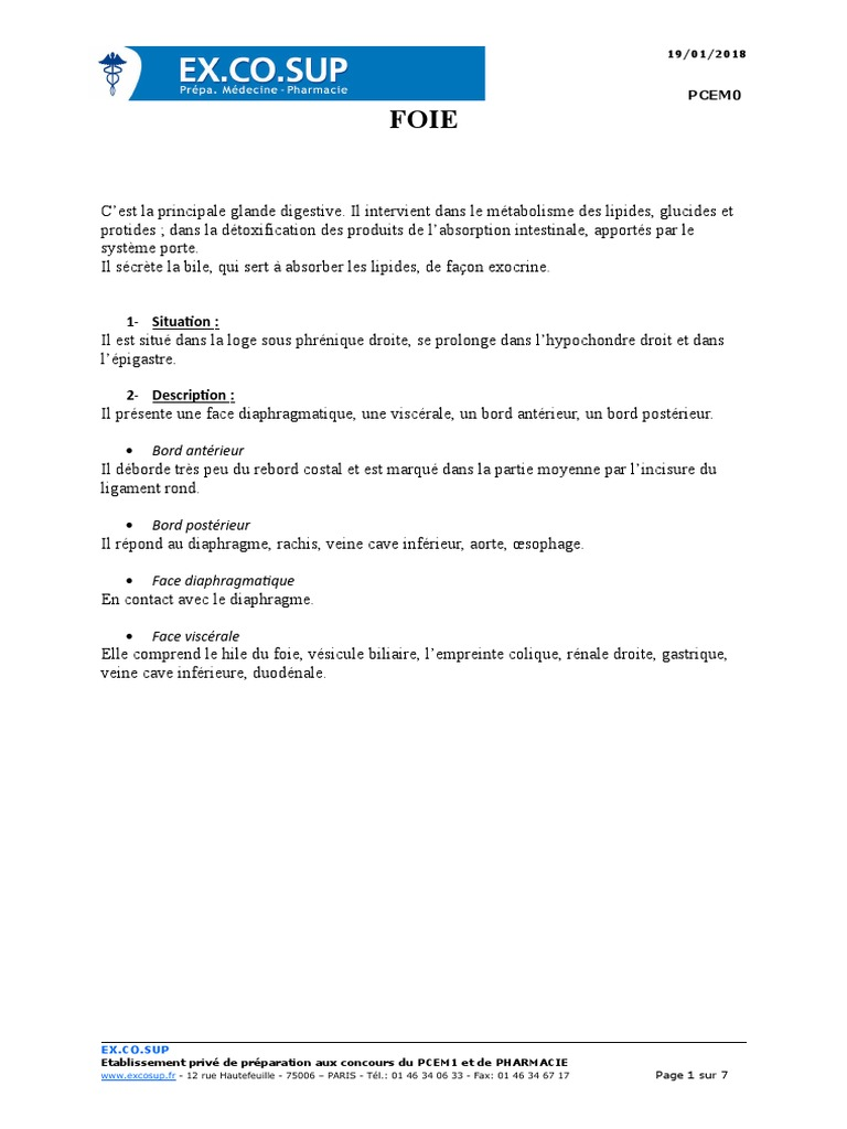 Anatomie-syst Dig 2 p0