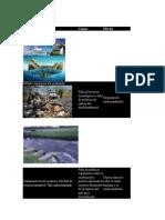5 Problemas Ambientalñes