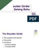 Shoulder Girdle