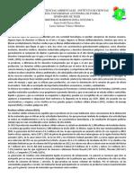 Manejo de Residuos Sólidos. Chávez y Velazco