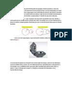 As Engrenagens São Parte Fundamental de Qualquer Sistema Mecânico