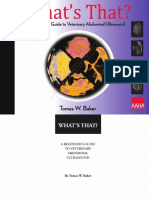 A Beginner's Guide to Veterinary Abdominal Ultrasound.pdf