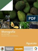 Monografía del aguacate.pdf