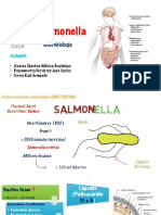 SALMONELA MICROBIOLOGIA