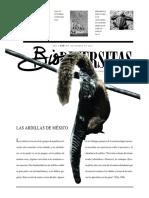 LAS ARDILLAS DE MÉXICO.pdf