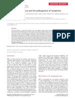 Patogenesis of Epstein Barr Virus y Los Linfomas 2016