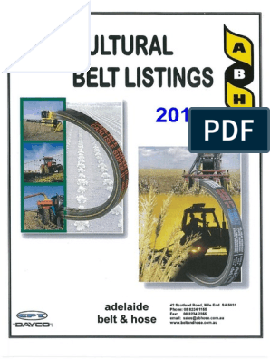 CASE IH 668929R1 Replacement Belt
