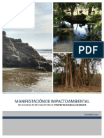 Manifestación de Impacto Ambiental Proyecto La Mancha