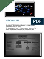 LA  QUÍMICA DE LAS  HORMONAS.docx