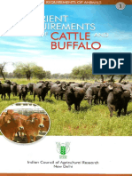 Nutrient Requirements of Cattle And
