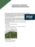 Infografía Para La Construcción e Instalación de Túneles Para Establecimiento de Frutales Menores y Hortalizas