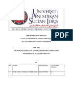 plant physiology sbl exp 6