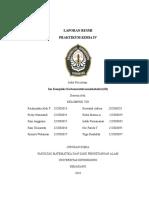 PERCOBAAN III (Ion Kompleks Karbonatotetraaminkobaltat(III)).doc