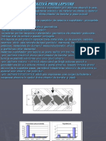 Presentation1.3